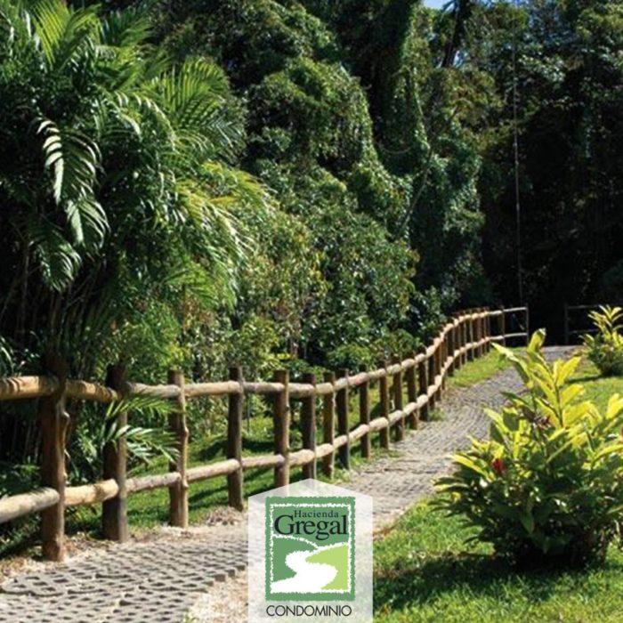 hacienda-gregal-curridabat-2